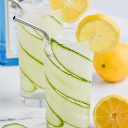 Cucumber Lemon Gin and Tonic
