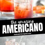 glasses of Americano Cocktail recipe with orange slice garnish