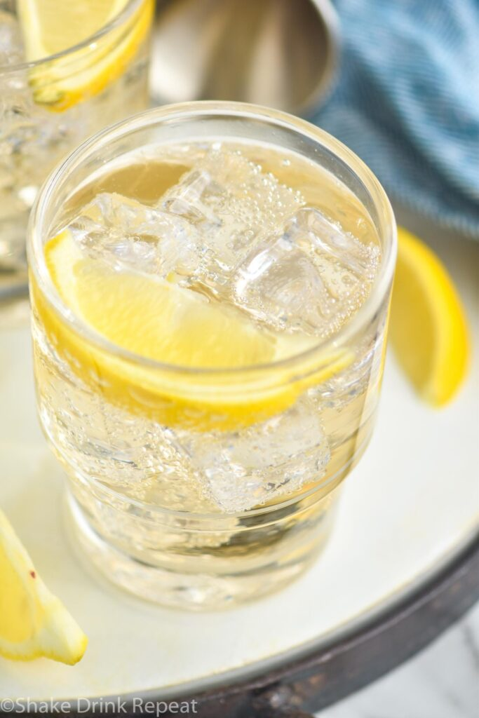 glass of gin and ginger ale with ice and lemon