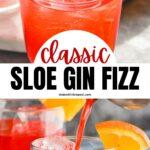 Sloe gin fizz recipe with orange slice and cherry garnish