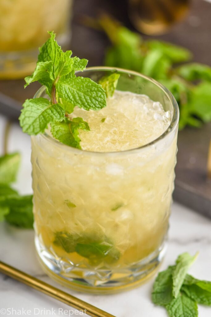 glass of mint julep cocktail recipe with mint garnish